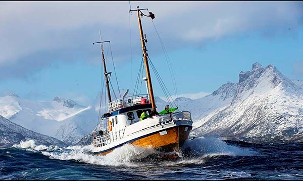 Fishing Trip From Henningsv 230 R Classic Norway